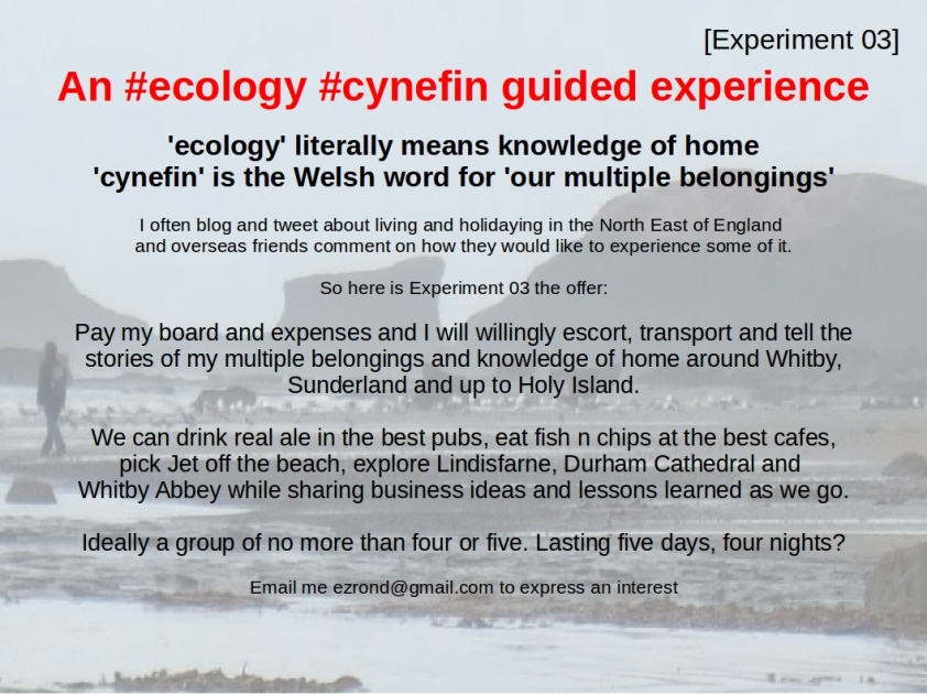 Experiment03 cynefin ecology guided experience